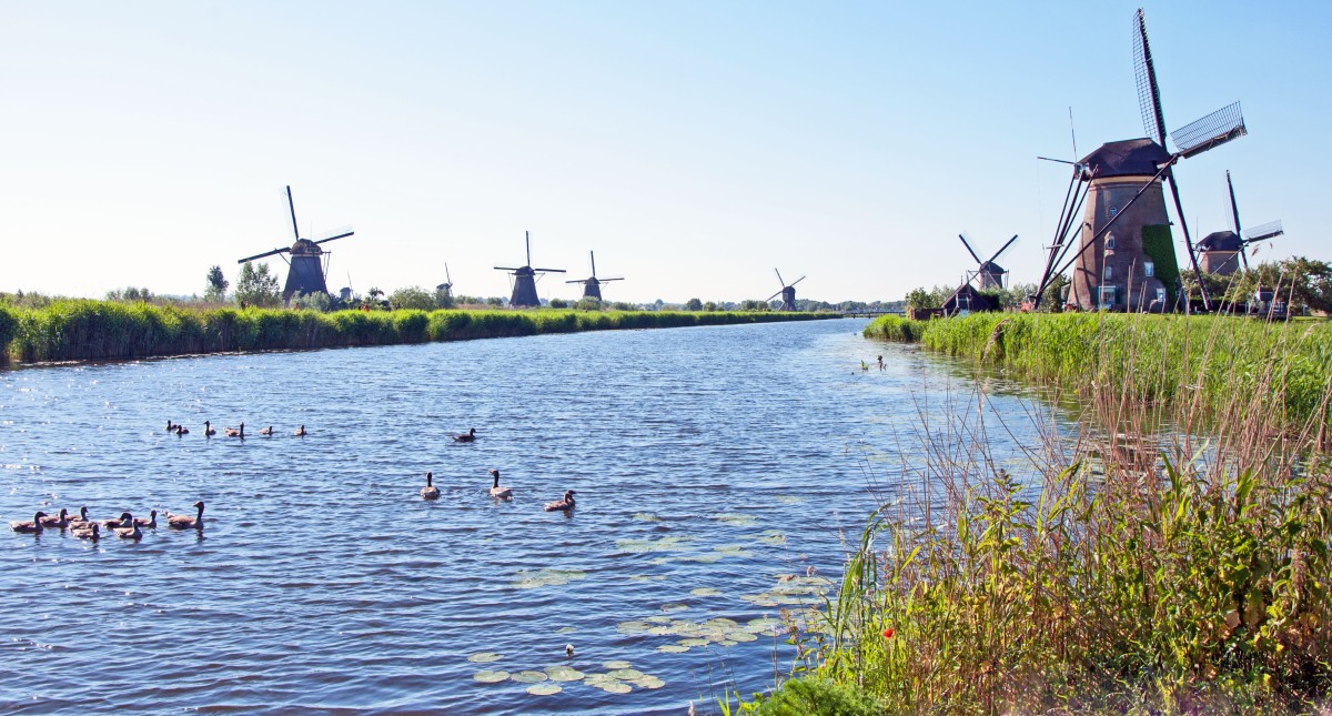 Best of the Netherlands in 1 day using Holland Travel Ticket