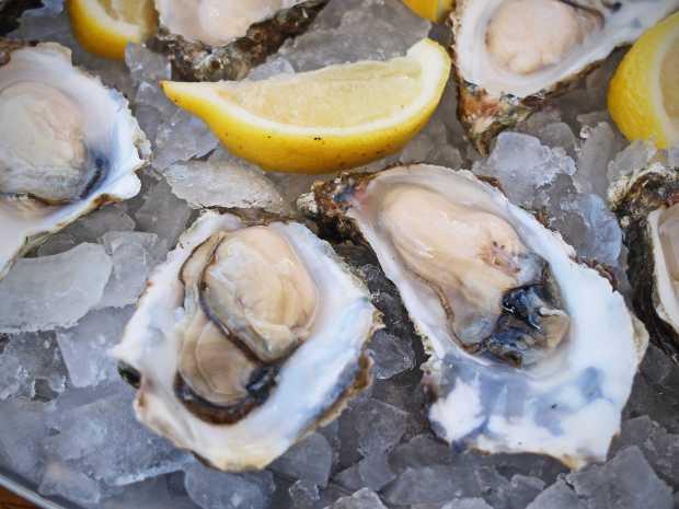 oban-oysters-beyondourhorizons