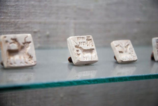 Harappan seals featuring animals